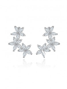 Zircon Cubic Zirconia Earrings